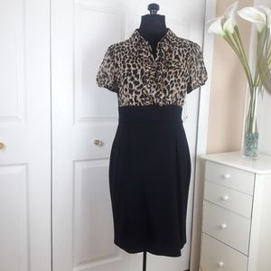 NWT East 5th Leopard Top Dress Size 12P
